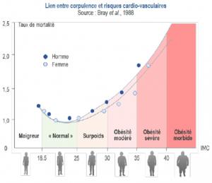 lien IMC risques cardiovasculaires